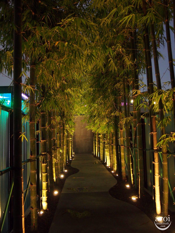 horizons-walkway