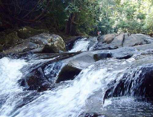 [Hua Hin] Pala-U Waterfall
