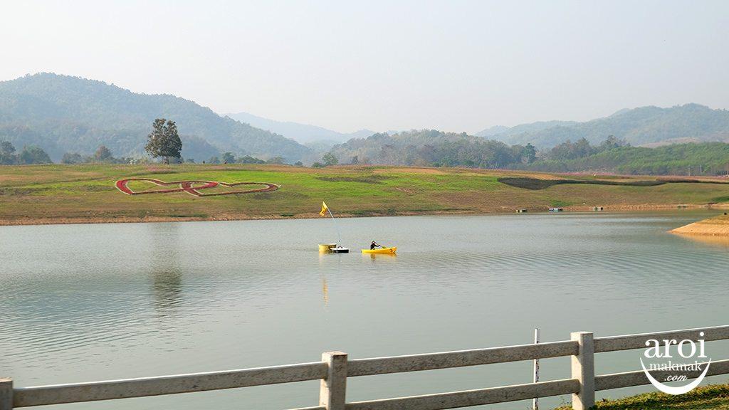 singhaparkchiangrai-field2