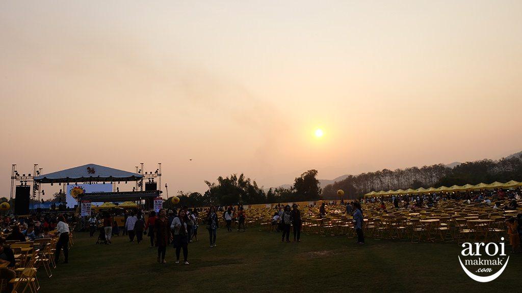 singhaparkchiangrai-field7