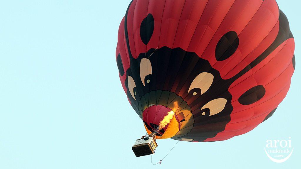 singhaparkchiangrai-hotairballoon12
