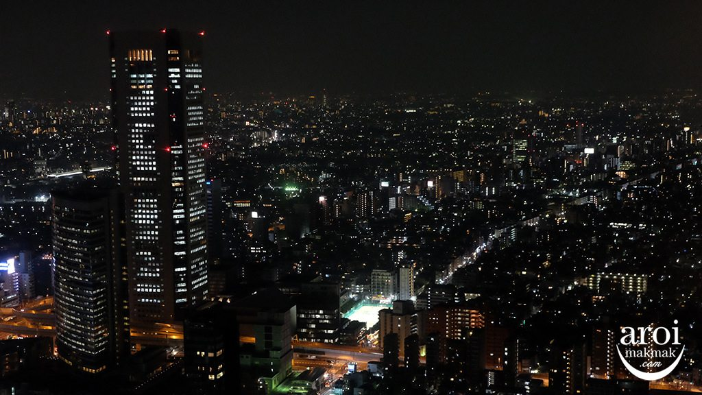 TokyoMetropolitanGovernmentBuildingObservation2