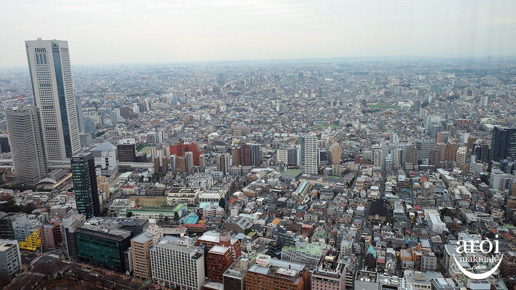 TokyoMetropolitanGovernmentBuildingObservation3