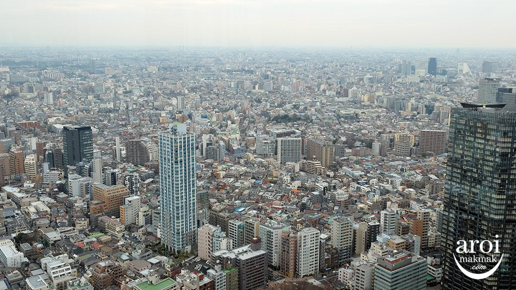 TokyoMetropolitanGovernmentBuildingObservation4