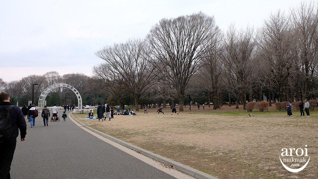 yoyogipark5