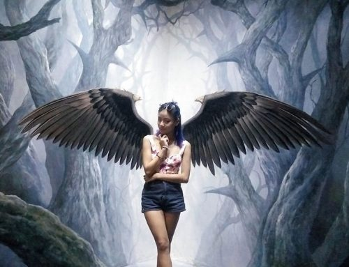 Art In Paradise – 3D Illusion Museum in Chiang Mai