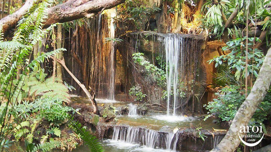 khaomaokhaofang-forest