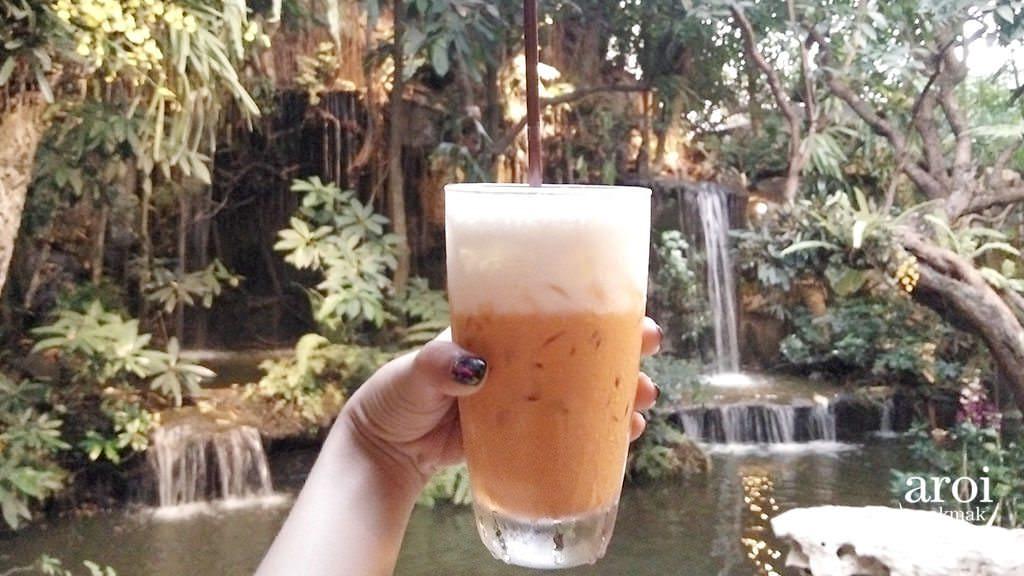khaomaokhaofang-thaimilktea