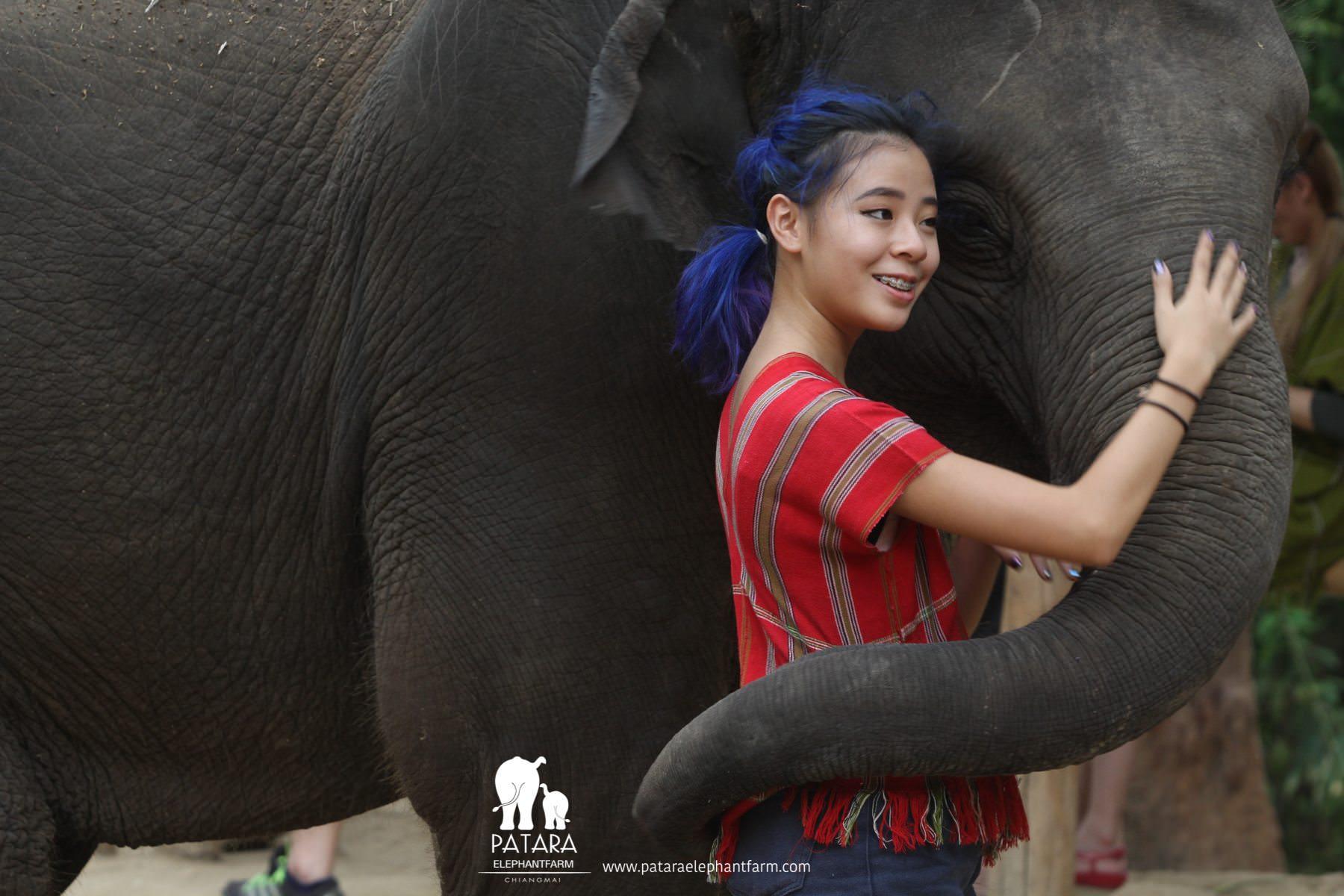 PataraElephantFarm-ChiangMai-Hugs