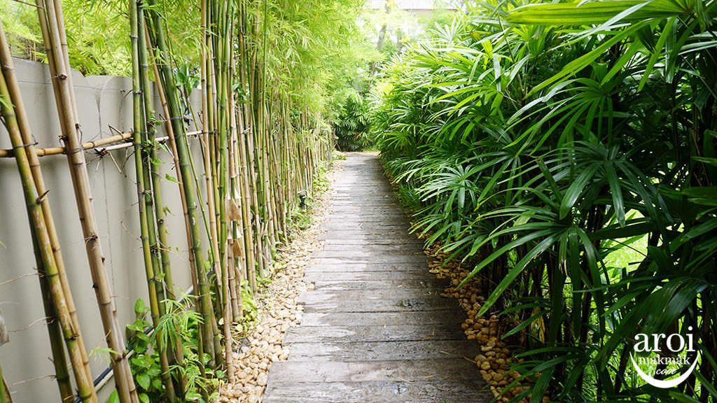 divananurturespa-garden