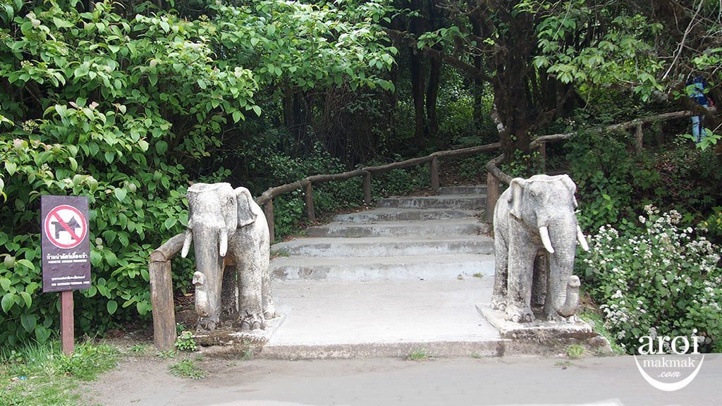 doiinthanon_entrance