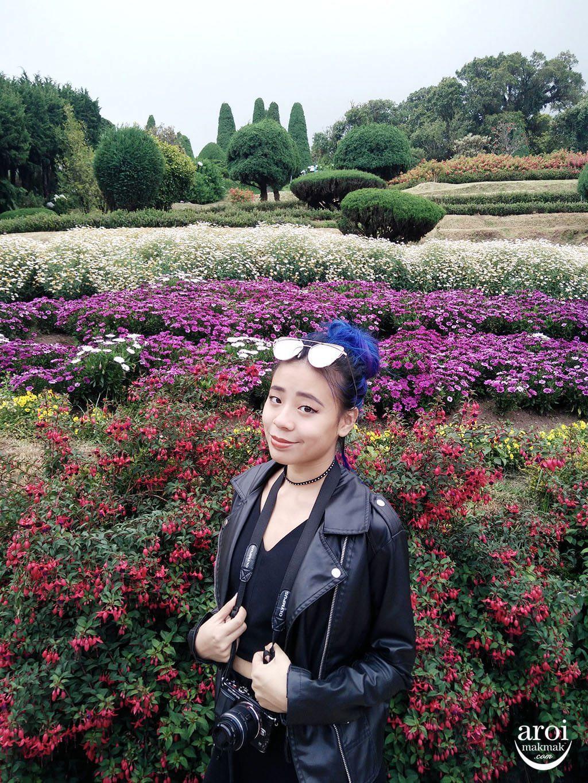 doiinthanon_pagodagarden