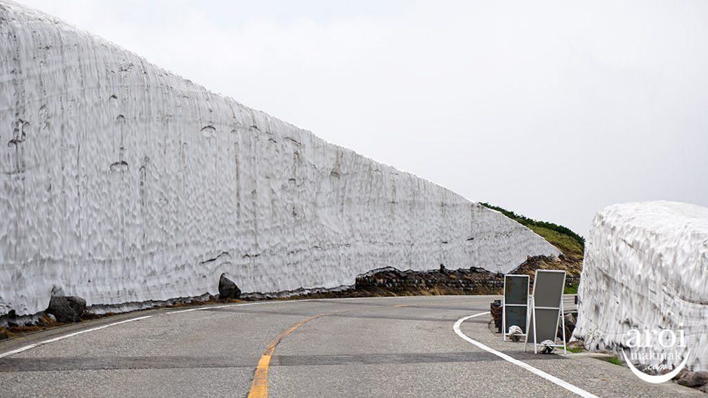 toyama_TateyamaKurobeAlpineRoute-snowwall