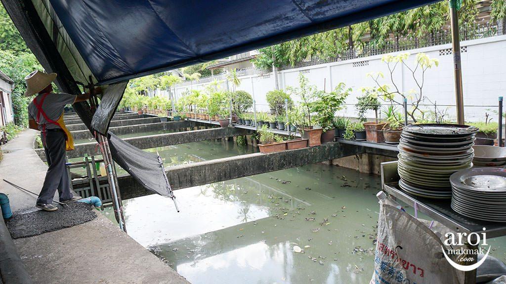 nhongrimklong-canal