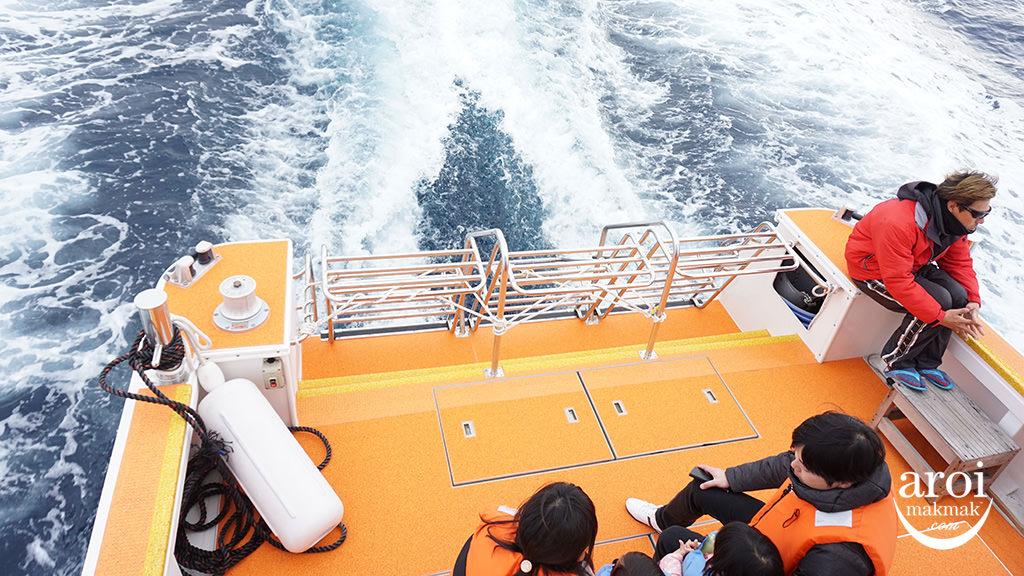 okinawa-whalewatching1