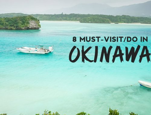 8 Reasons Why You Need to Travel to Okinawa, the popular beach resort of Japan!