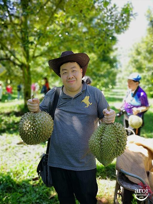 chumphon-durianfarm10