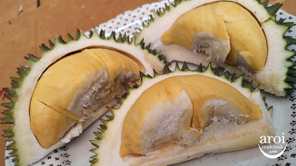 chumphon-durianfarm7