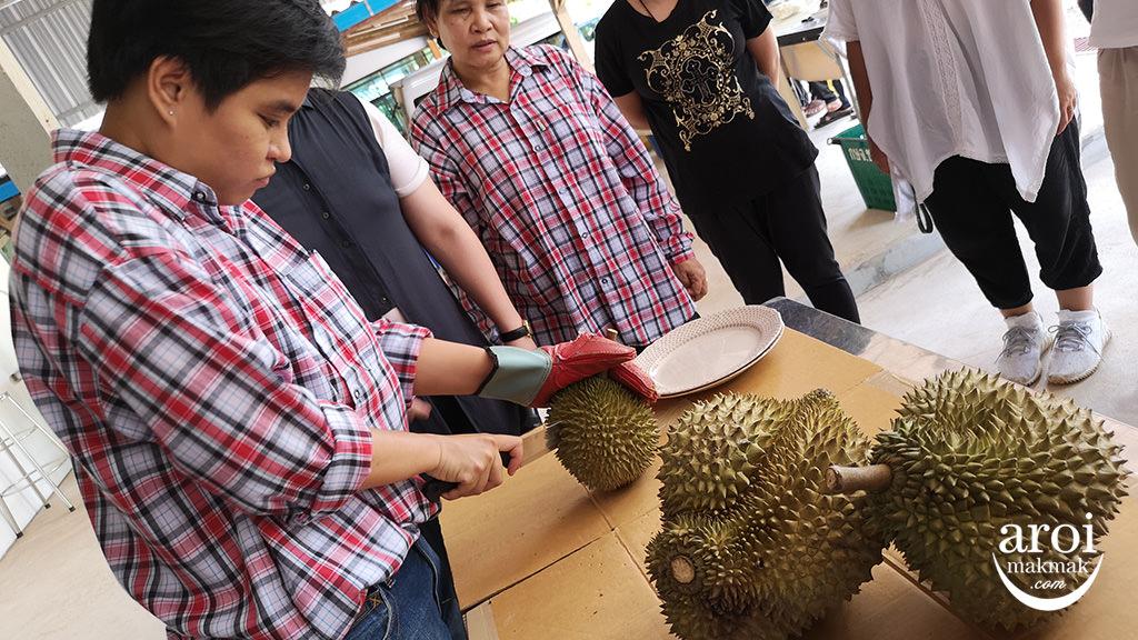chumphon-durianfarm8