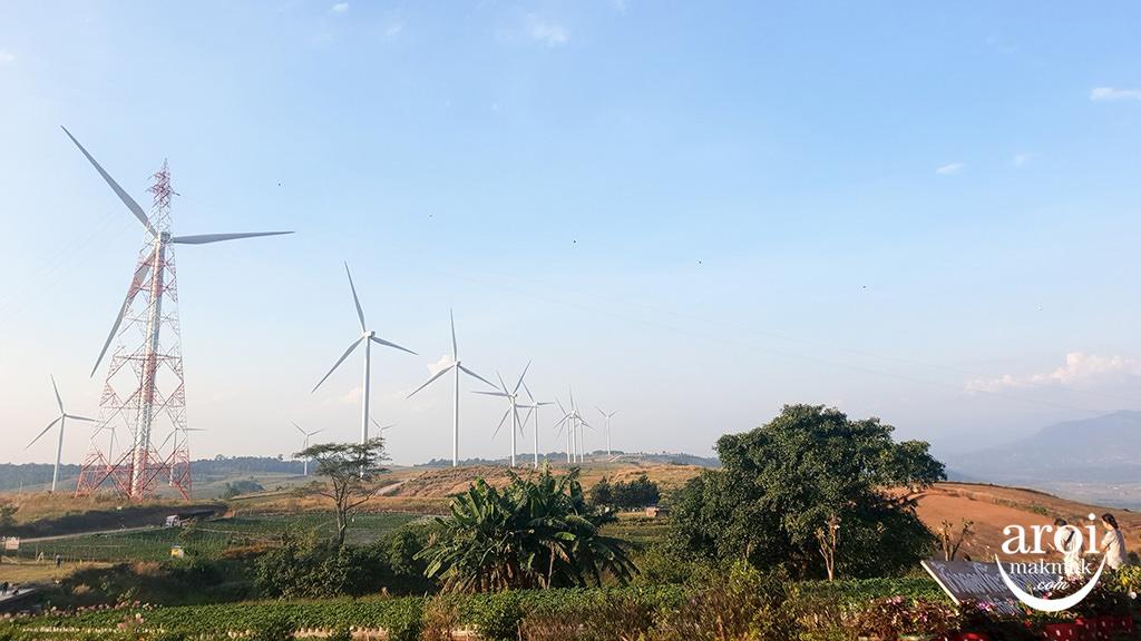 khaokhotrip-WindFarm