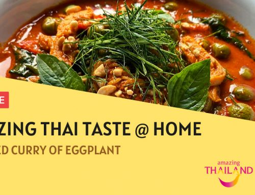 Red Curry of Chicken & Eggplant – Amazing Thai Taste @ Home