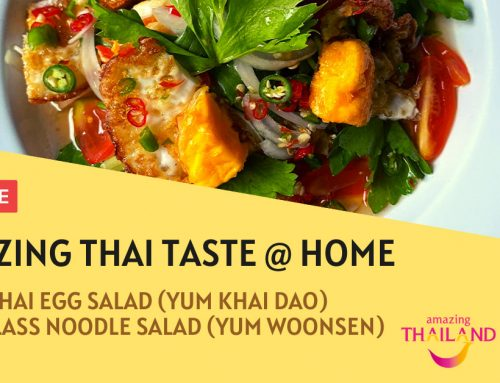 Spicy Thai Egg Salad & Thai Glass Noodle Salad – Amazing Thai Taste @ Home